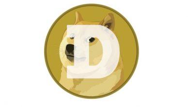 Dogecoin, la cripto nata per scherzo